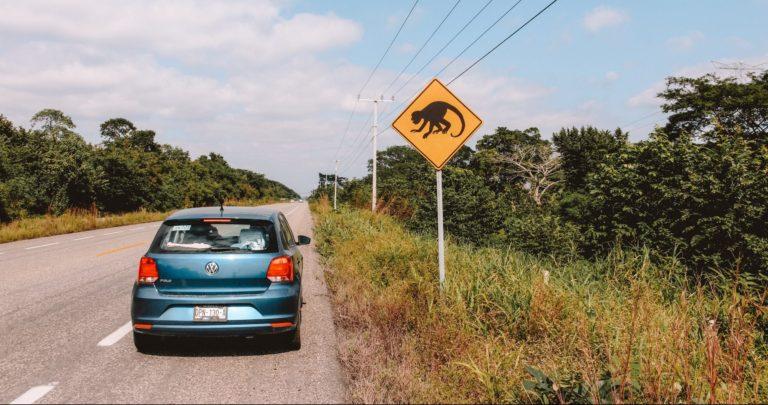 silnice a auto